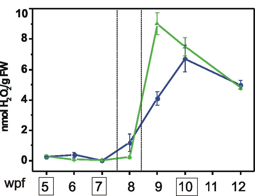 http://static-content.springer.com/image/art%3A10.1186%2F1471-2164-8-428/MediaObjects/12864_2007_Article_1141_Fig6_HTML.jpg