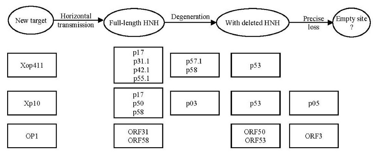 http://static-content.springer.com/image/art%3A10.1186%2F1471-2164-8-442/MediaObjects/12864_2007_Article_1155_Fig3_HTML.jpg