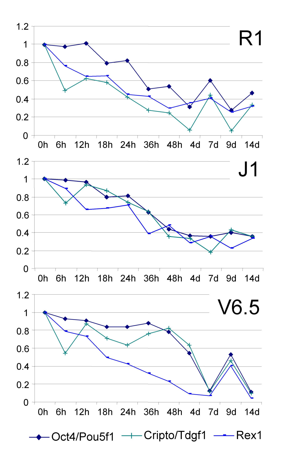 http://static-content.springer.com/image/art%3A10.1186%2F1471-2164-8-85/MediaObjects/12864_2006_Article_798_Fig2_HTML.jpg
