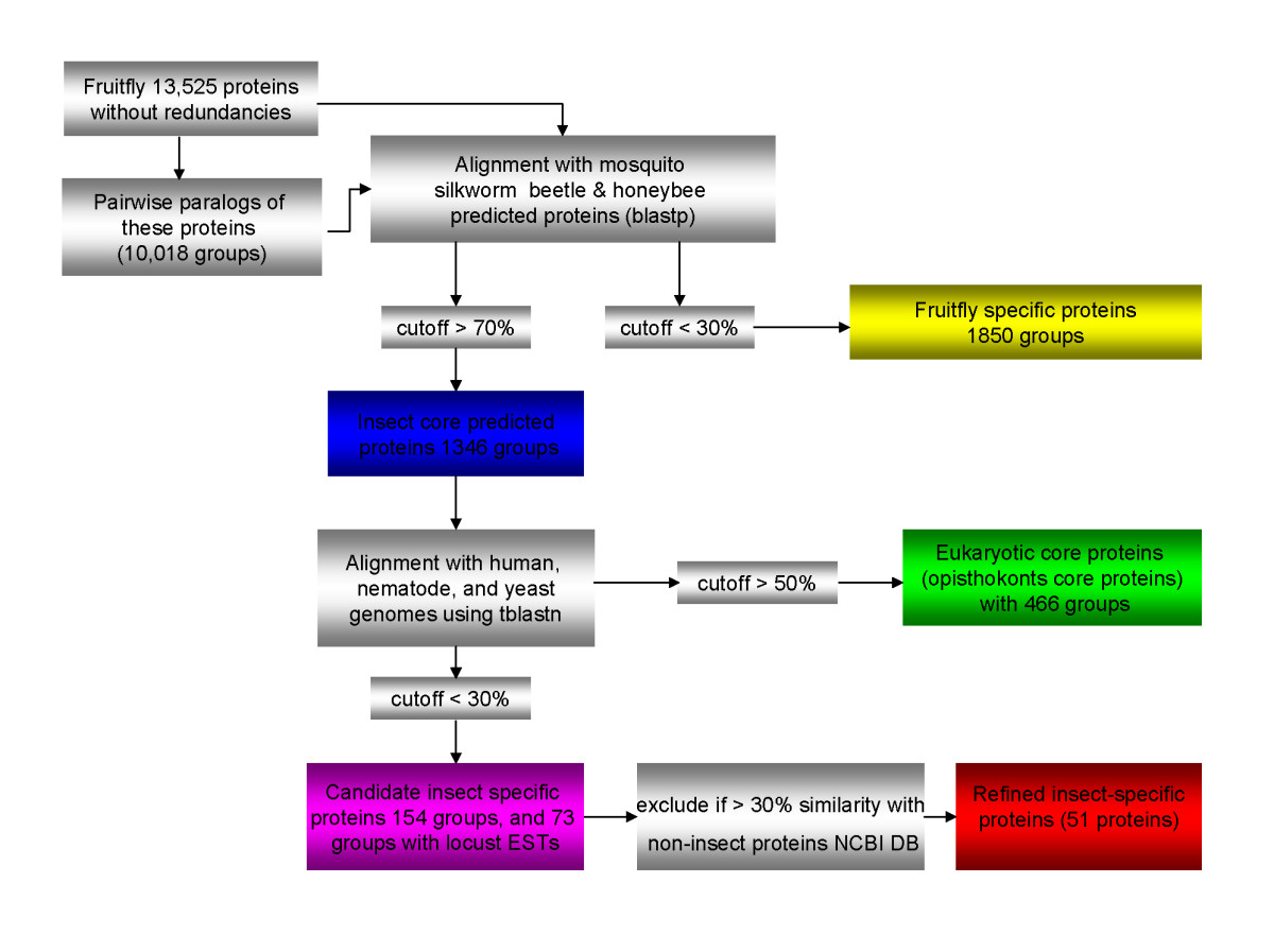 http://static-content.springer.com/image/art%3A10.1186%2F1471-2164-8-93/MediaObjects/12864_2006_Article_806_Fig1_HTML.jpg