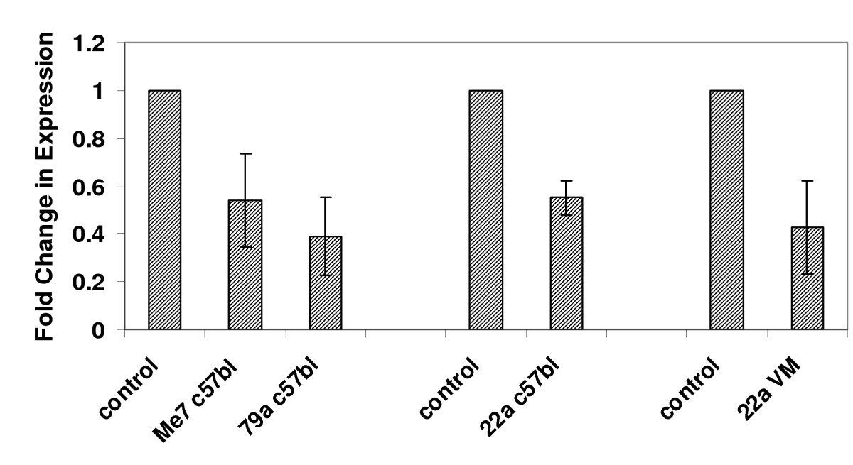 http://static-content.springer.com/image/art%3A10.1186%2F1471-2164-9-114/MediaObjects/12864_2007_Article_1308_Fig6_HTML.jpg
