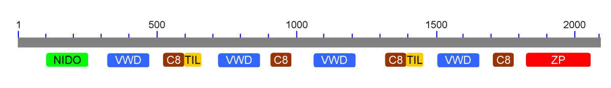 http://static-content.springer.com/image/art%3A10.1186%2F1471-2164-9-193/MediaObjects/12864_2007_Article_1386_Fig2_HTML.jpg