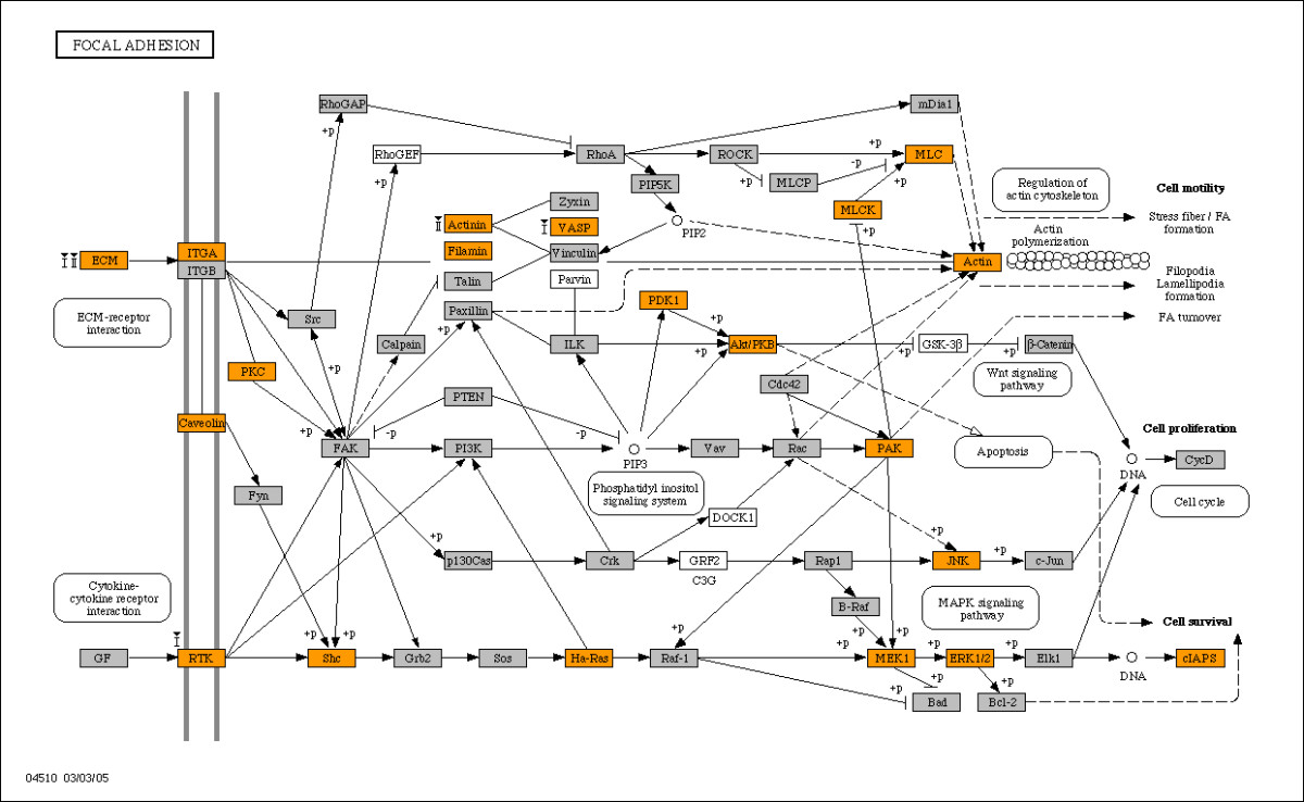 http://static-content.springer.com/image/art%3A10.1186%2F1471-2164-9-3/MediaObjects/12864_2007_Article_1197_Fig3_HTML.jpg