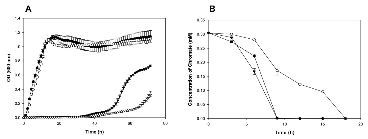 http://static-content.springer.com/image/art%3A10.1186%2F1471-2164-9-395/MediaObjects/12864_2008_Article_1588_Fig4_HTML.jpg