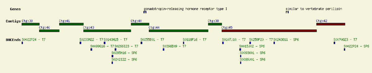 http://static-content.springer.com/image/art%3A10.1186%2F1471-2164-9-404/MediaObjects/12864_2008_Article_1597_Fig6_HTML.jpg