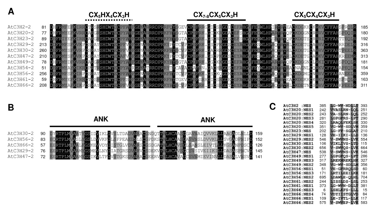 http://static-content.springer.com/image/art%3A10.1186%2F1471-2164-9-44/MediaObjects/12864_2007_Article_1238_Fig8_HTML.jpg