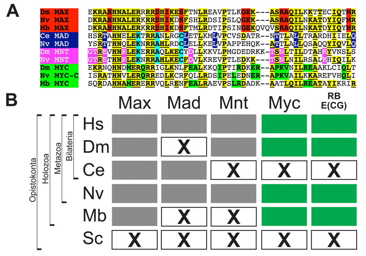 http://static-content.springer.com/image/art%3A10.1186%2F1471-2164-9-442/MediaObjects/12864_2008_Article_1635_Fig3_HTML.jpg