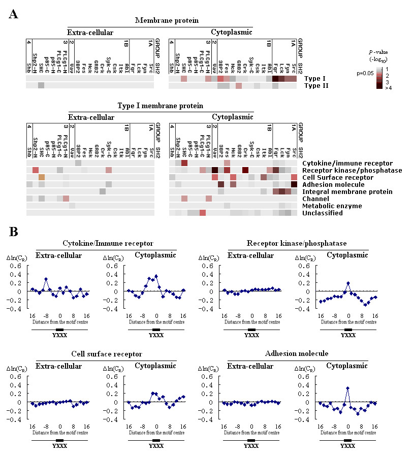 http://static-content.springer.com/image/art%3A10.1186%2F1471-2164-9-452/MediaObjects/12864_2008_Article_1645_Fig5_HTML.jpg