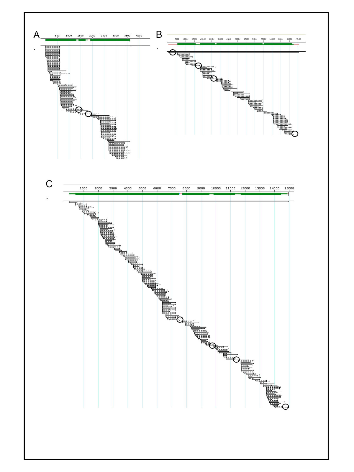 http://static-content.springer.com/image/art%3A10.1186%2F1471-2164-9-5/MediaObjects/12864_2007_Article_1199_Fig3_HTML.jpg