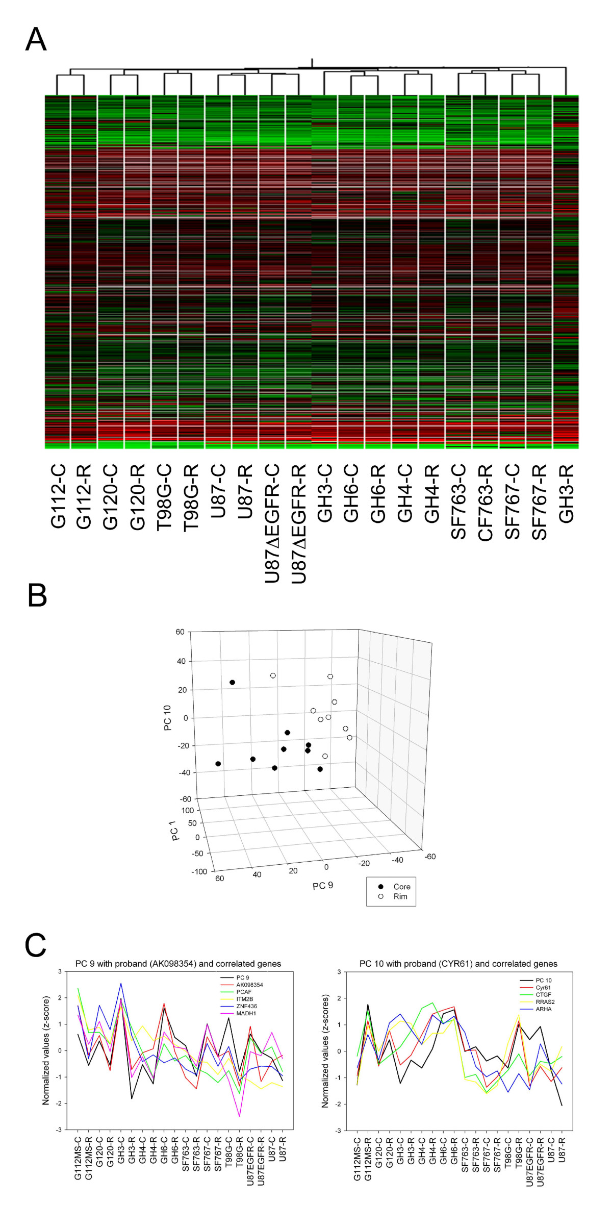 http://static-content.springer.com/image/art%3A10.1186%2F1471-2164-9-54/MediaObjects/12864_2007_Article_1248_Fig1_HTML.jpg