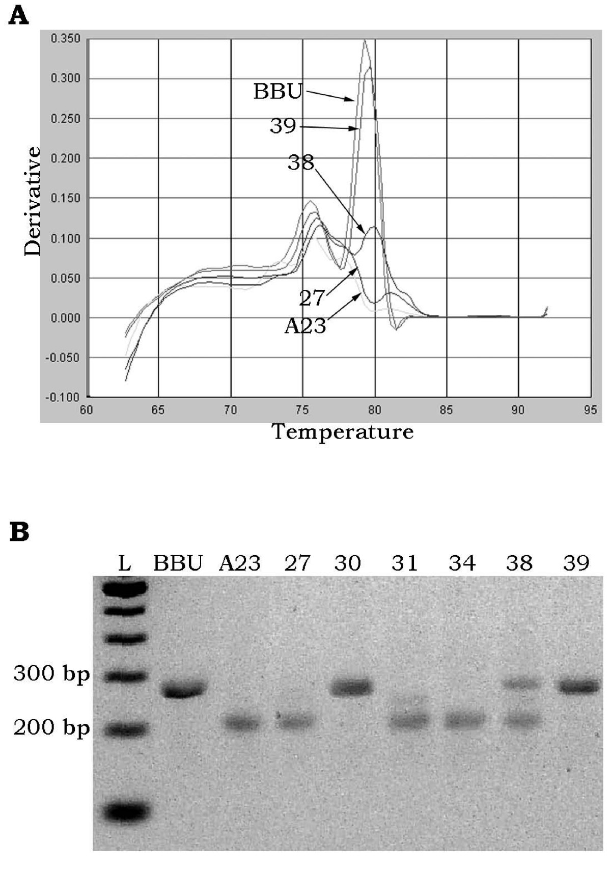 http://static-content.springer.com/image/art%3A10.1186%2F1471-2164-9-544/MediaObjects/12864_2008_Article_1737_Fig7_HTML.jpg