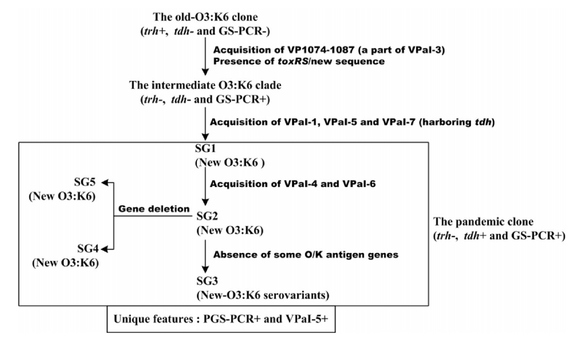 http://static-content.springer.com/image/art%3A10.1186%2F1471-2164-9-570/MediaObjects/12864_2008_Article_1763_Fig4_HTML.jpg