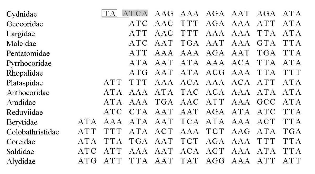 http://static-content.springer.com/image/art%3A10.1186%2F1471-2164-9-610/MediaObjects/12864_2008_Article_1803_Fig6_HTML.jpg