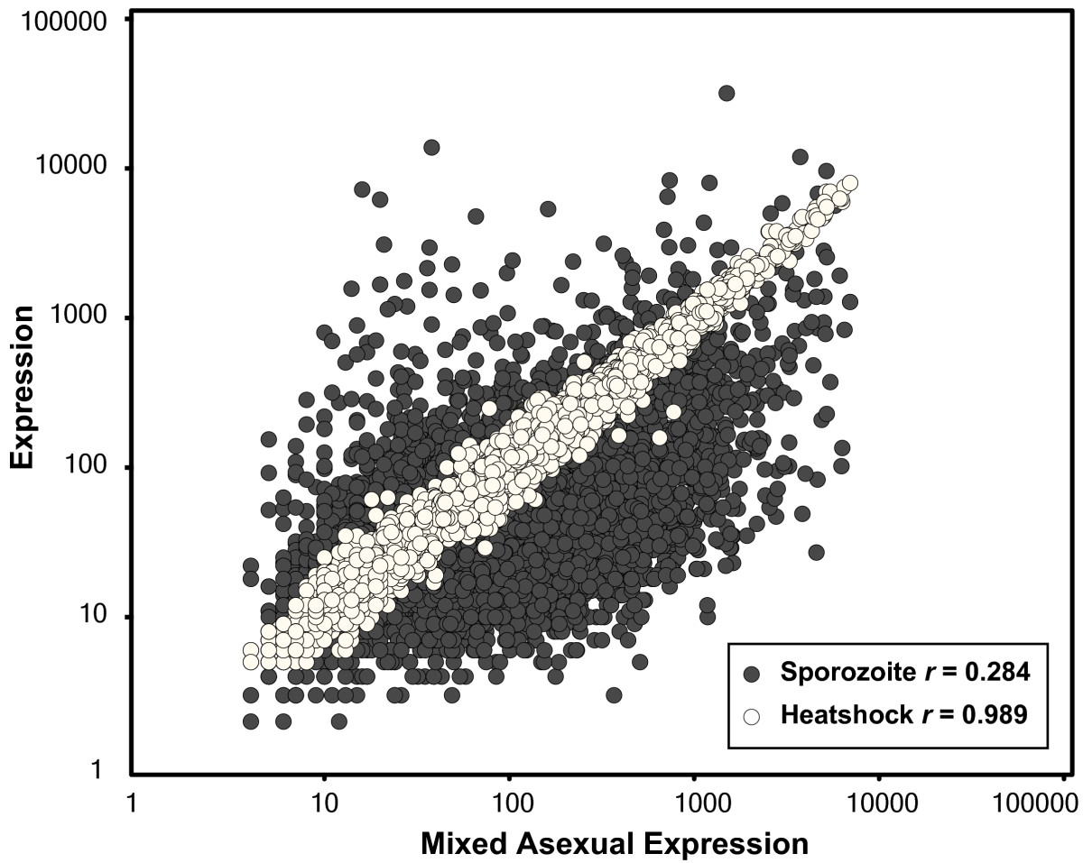 http://static-content.springer.com/image/art%3A10.1186%2F1471-2164-9-70/MediaObjects/12864_2007_Article_1264_Fig8_HTML.jpg