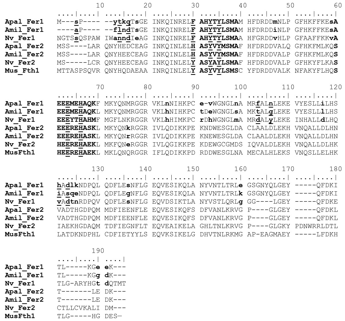 http://static-content.springer.com/image/art%3A10.1186%2F1471-2164-9-97/MediaObjects/12864_2007_Article_1291_Fig5_HTML.jpg
