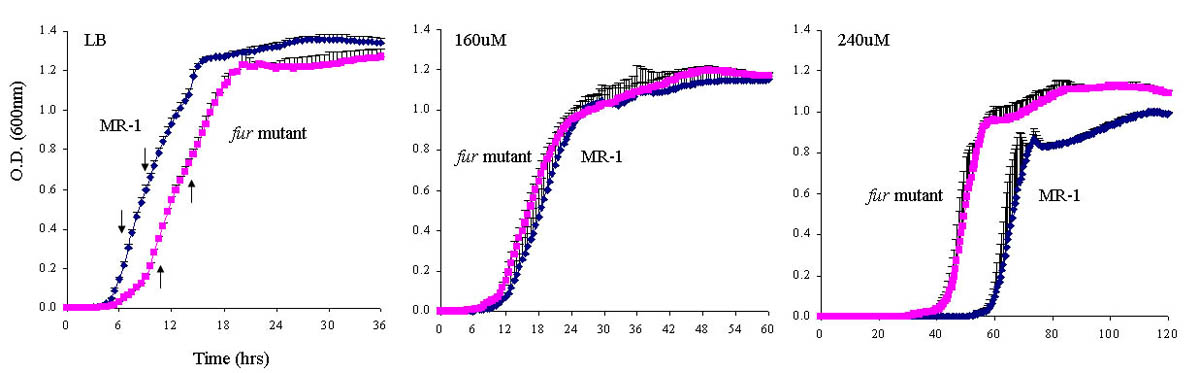 http://static-content.springer.com/image/art%3A10.1186%2F1471-2164-9-S1-S11/MediaObjects/12864_2008_Article_1842_Fig2_HTML.jpg