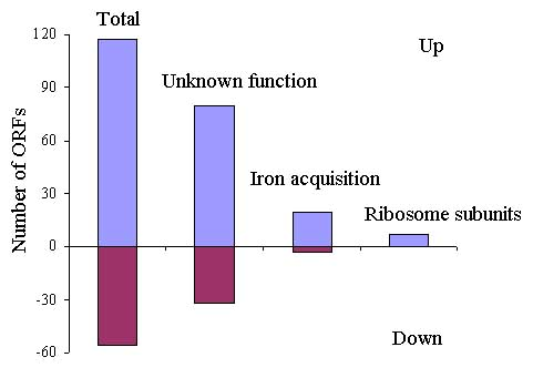 http://static-content.springer.com/image/art%3A10.1186%2F1471-2164-9-S1-S11/MediaObjects/12864_2008_Article_1842_Fig4_HTML.jpg