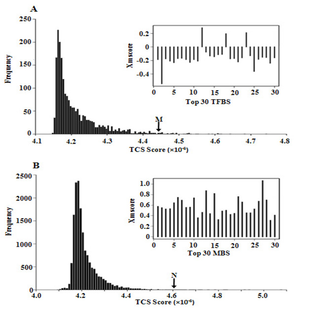 http://static-content.springer.com/image/art%3A10.1186%2F1471-2164-9-S1-S19/MediaObjects/12864_2008_Article_1850_Fig1_HTML.jpg