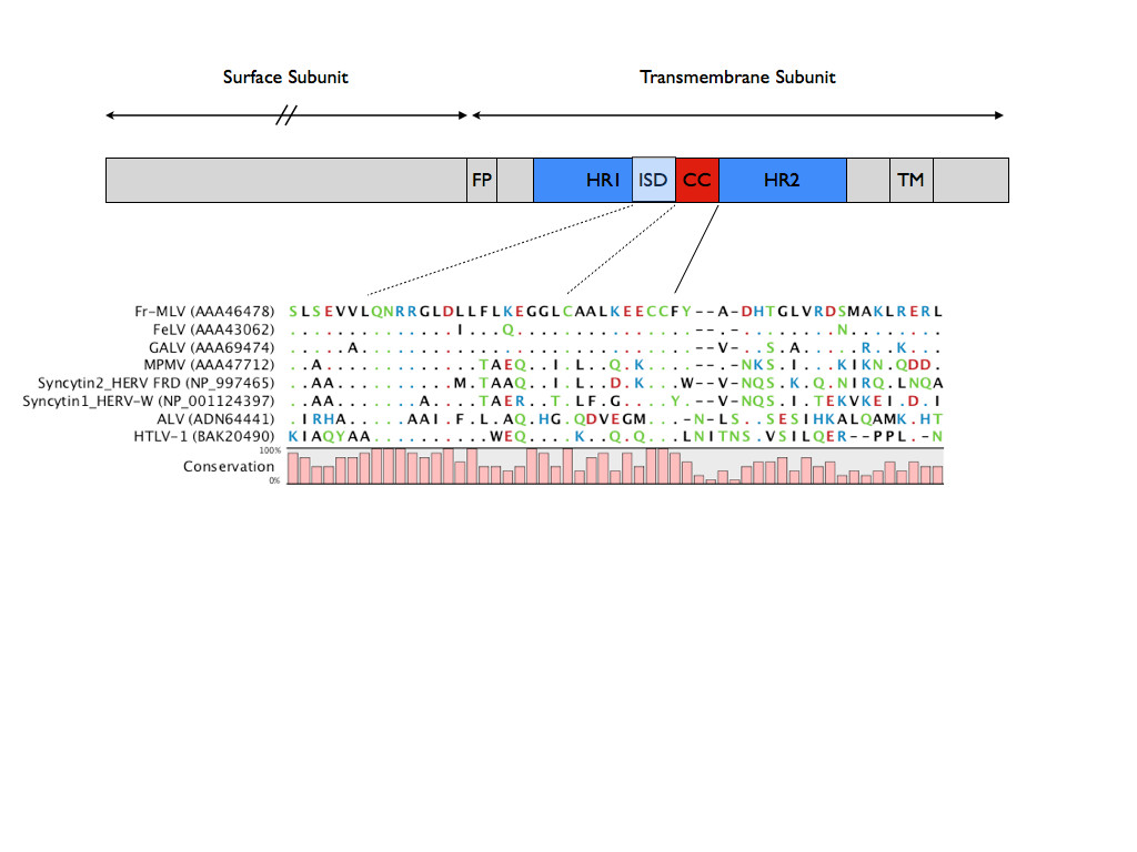http://static-content.springer.com/image/art%3A10.1186%2F1471-2172-14-51/MediaObjects/12865_2013_Article_554_Fig1_HTML.jpg