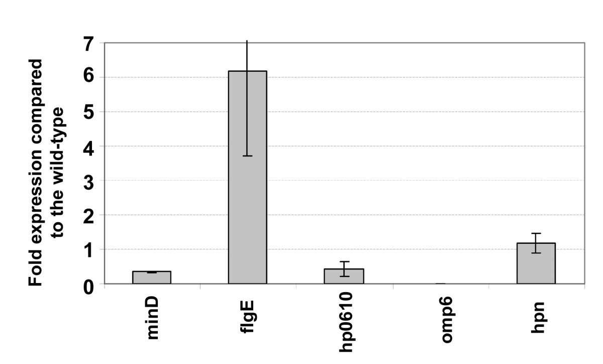 http://static-content.springer.com/image/art%3A10.1186%2F1471-2180-10-106/MediaObjects/12866_2009_Article_1062_Fig6_HTML.jpg
