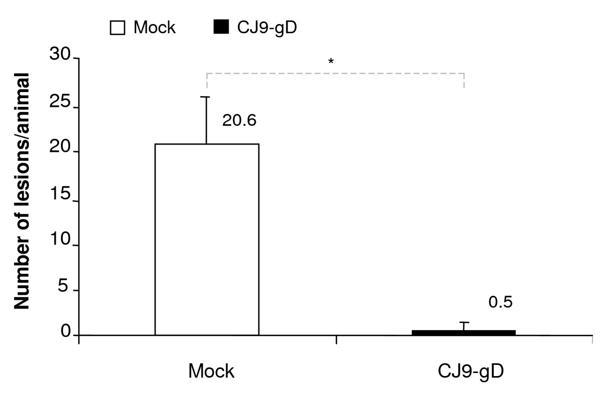 http://static-content.springer.com/image/art%3A10.1186%2F1471-2180-10-163/MediaObjects/12866_2010_Article_1119_Fig3_HTML.jpg