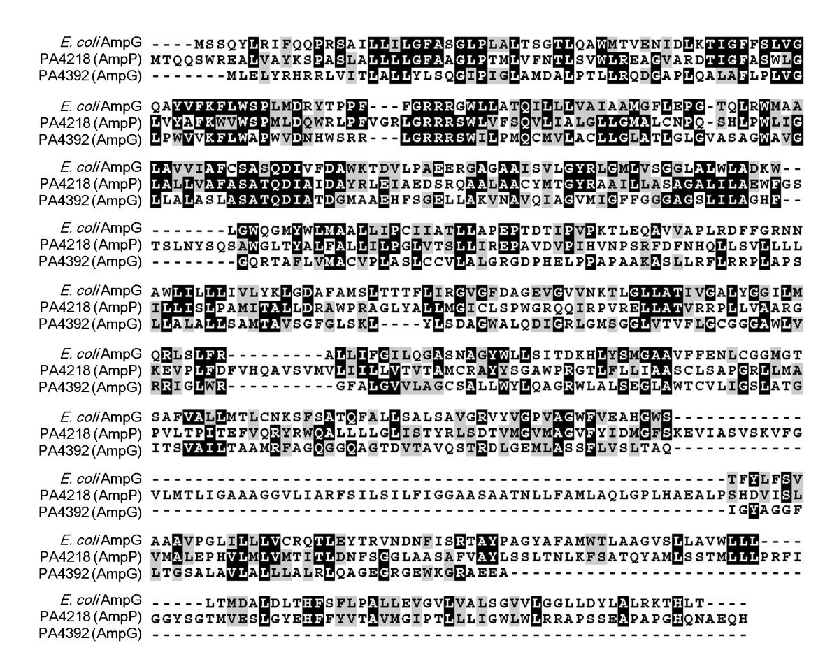 http://static-content.springer.com/image/art%3A10.1186%2F1471-2180-10-328/MediaObjects/12866_2010_Article_1284_Fig1_HTML.jpg