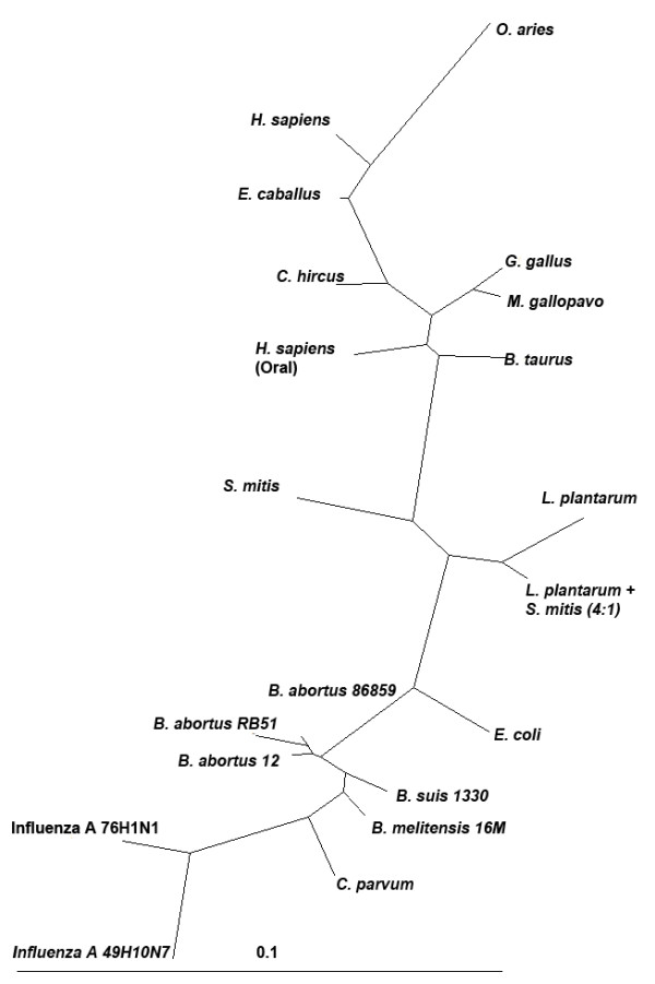 http://static-content.springer.com/image/art%3A10.1186%2F1471-2180-11-132/MediaObjects/12866_2011_1417_Fig5_HTML.jpg