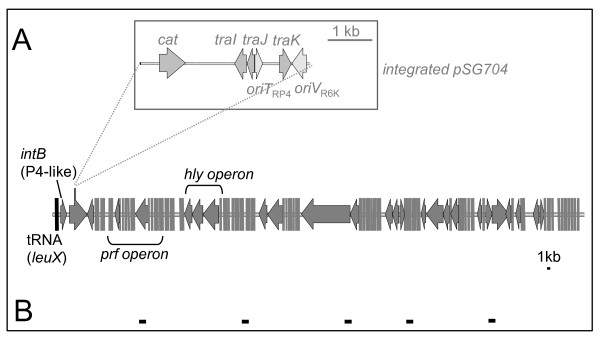 http://static-content.springer.com/image/art%3A10.1186%2F1471-2180-11-210/MediaObjects/12866_2011_1508_Fig3_HTML.jpg