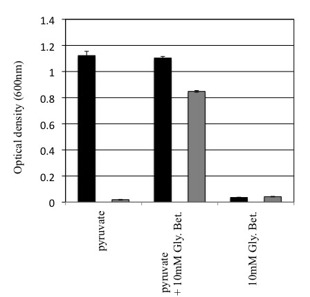 http://static-content.springer.com/image/art%3A10.1186%2F1471-2180-11-253/MediaObjects/12866_2011_1561_Fig3_HTML.jpg