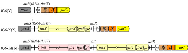 http://static-content.springer.com/image/art%3A10.1186%2F1471-2180-11-269/MediaObjects/12866_2011_1592_Fig2_HTML.jpg