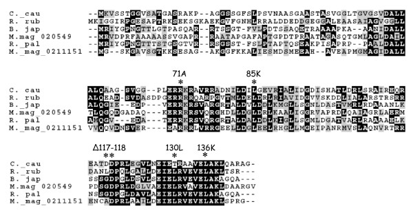 http://static-content.springer.com/image/art%3A10.1186%2F1471-2180-11-89/MediaObjects/12866_2011_1364_Fig3_HTML.jpg