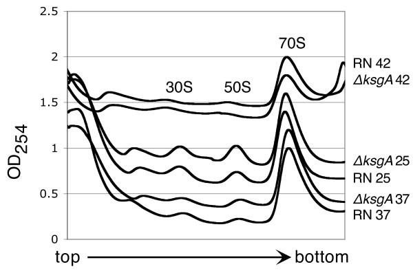 http://static-content.springer.com/image/art%3A10.1186%2F1471-2180-12-244/MediaObjects/12866_2012_1800_Fig2_HTML.jpg