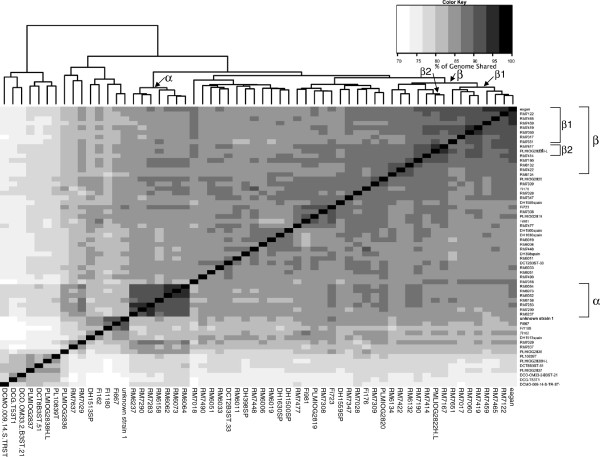 http://static-content.springer.com/image/art%3A10.1186%2F1471-2180-12-273/MediaObjects/12866_2012_1821_Fig1_HTML.jpg