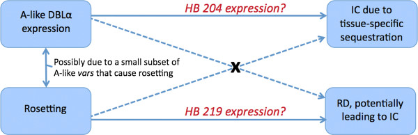 http://static-content.springer.com/image/art%3A10.1186%2F1471-2180-13-244/MediaObjects/12866_2013_2116_Fig4_HTML.jpg