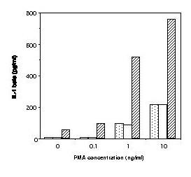 http://static-content.springer.com/image/art%3A10.1186%2F1471-2180-3-7/MediaObjects/12866_2003_Article_80_Fig13_HTML.jpg