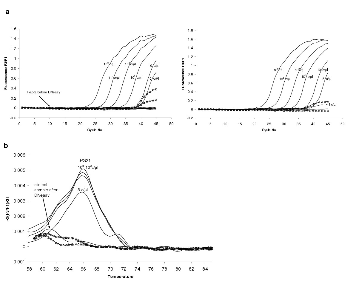 http://static-content.springer.com/image/art%3A10.1186%2F1471-2180-4-35/MediaObjects/12866_2003_Article_133_Fig9_HTML.jpg