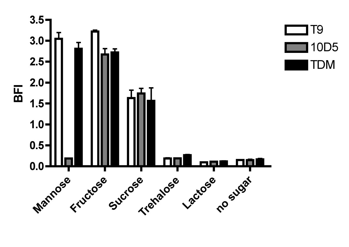 http://static-content.springer.com/image/art%3A10.1186%2F1471-2180-6-60/MediaObjects/12866_2006_Article_273_Fig4_HTML.jpg