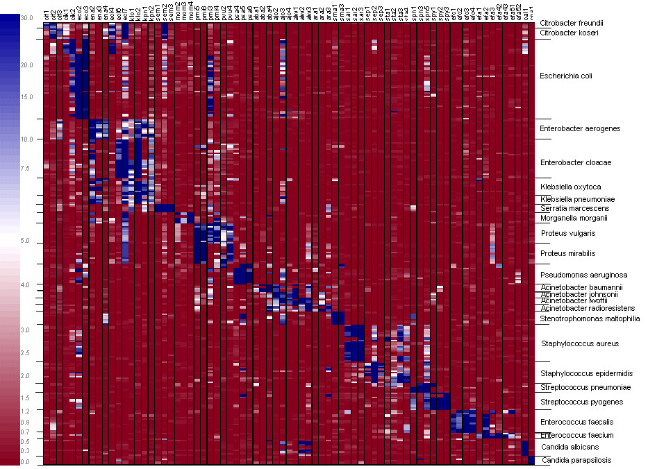 http://static-content.springer.com/image/art%3A10.1186%2F1471-2180-7-78/MediaObjects/12866_2007_Article_395_Fig5_HTML.jpg
