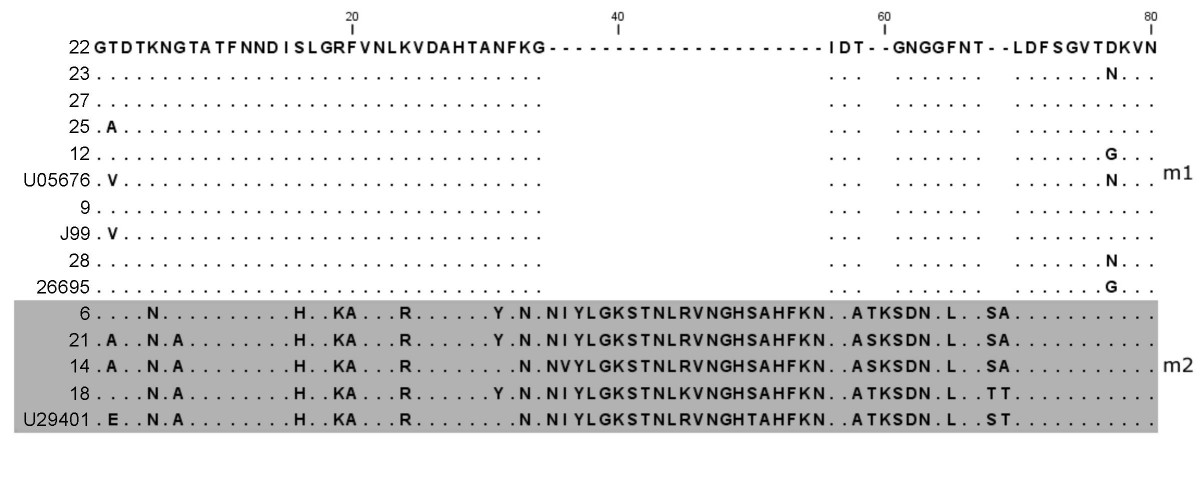 http://static-content.springer.com/image/art%3A10.1186%2F1471-2180-8-175/MediaObjects/12866_2008_Article_608_Fig7_HTML.jpg