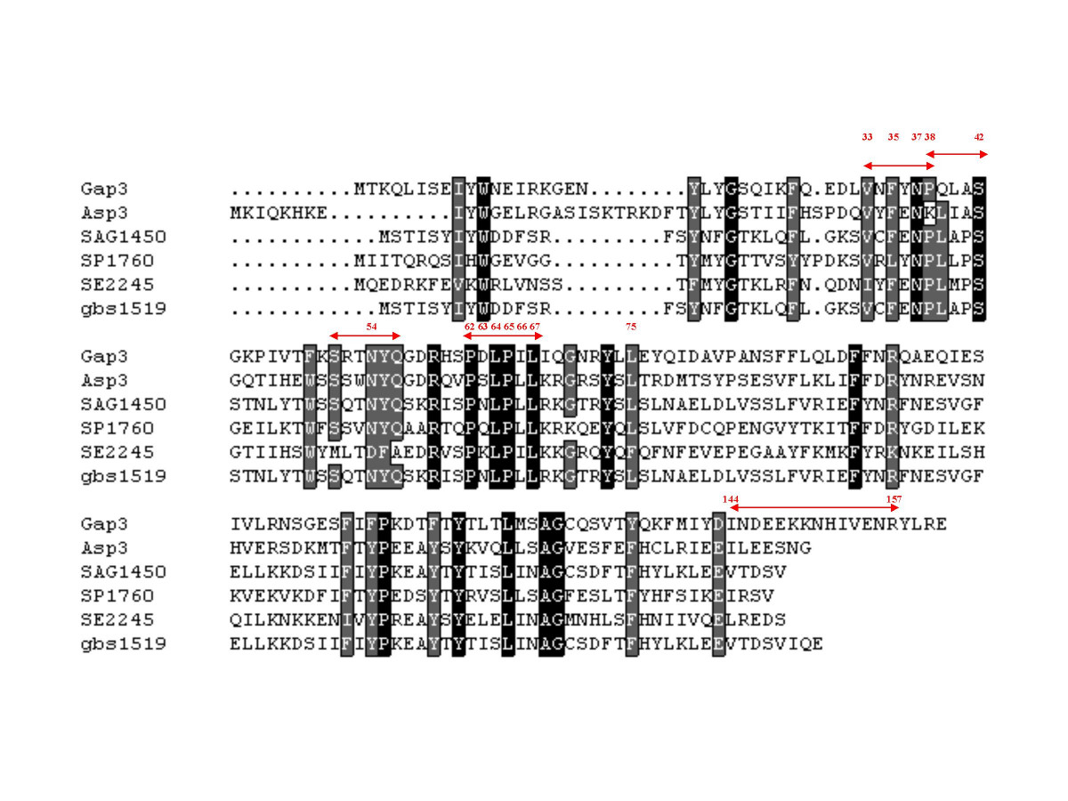 http://static-content.springer.com/image/art%3A10.1186%2F1471-2180-8-52/MediaObjects/12866_2007_Article_485_Fig1_HTML.jpg
