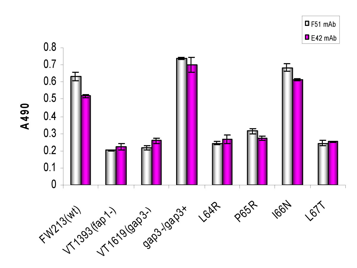 http://static-content.springer.com/image/art%3A10.1186%2F1471-2180-8-52/MediaObjects/12866_2007_Article_485_Fig3_HTML.jpg
