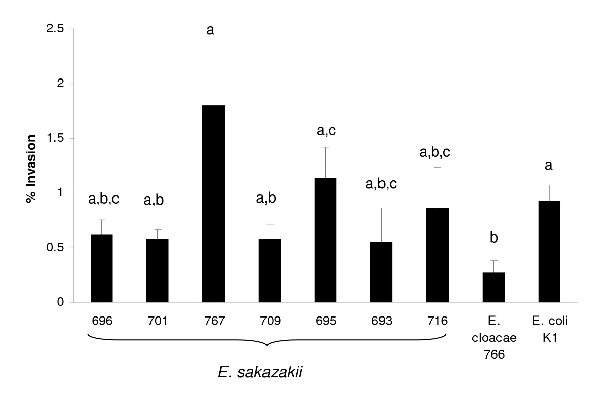 http://static-content.springer.com/image/art%3A10.1186%2F1471-2180-8-64/MediaObjects/12866_2007_Article_497_Fig4_HTML.jpg