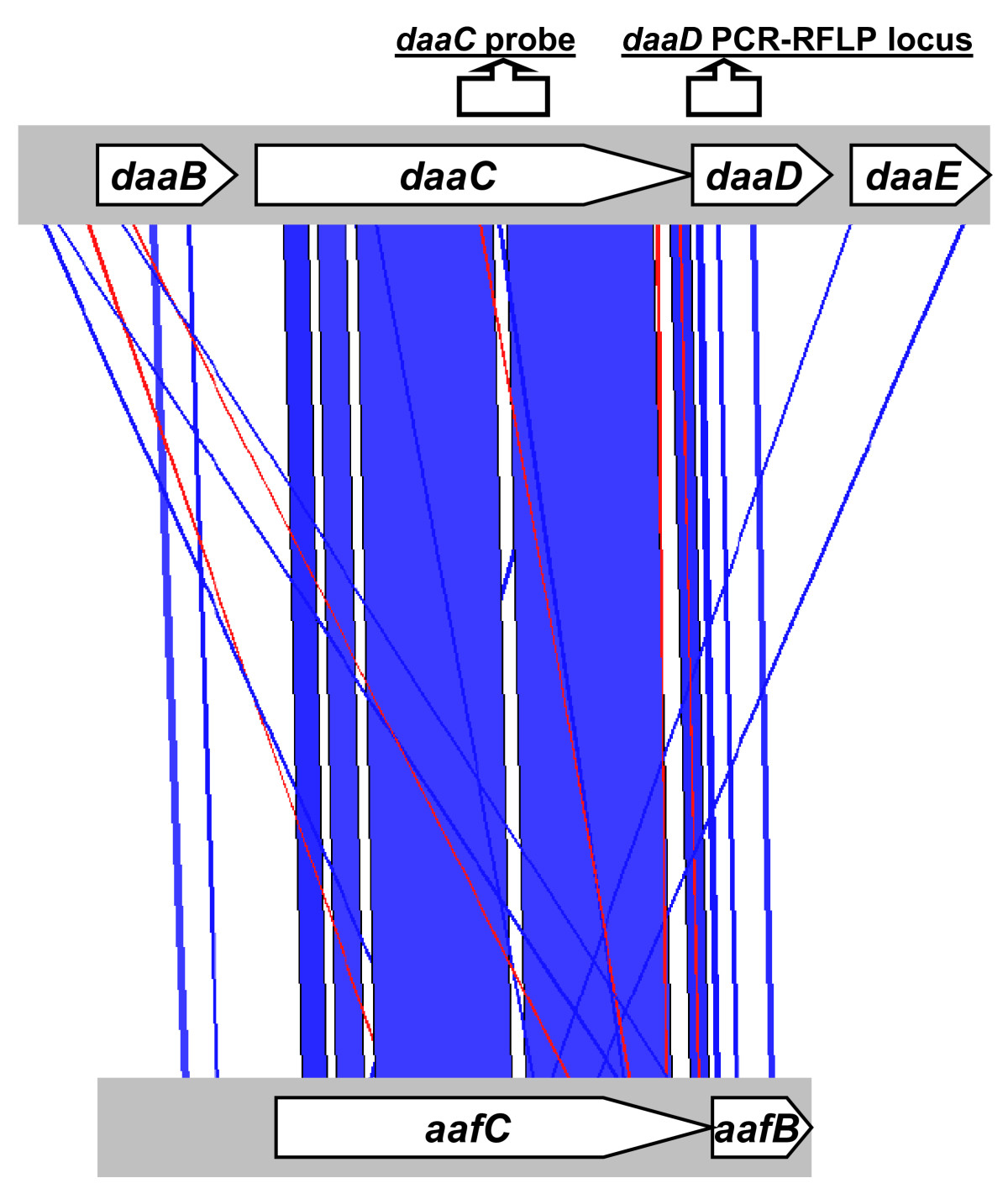 http://static-content.springer.com/image/art%3A10.1186%2F1471-2180-9-269/MediaObjects/12866_2009_Article_940_Fig2_HTML.jpg