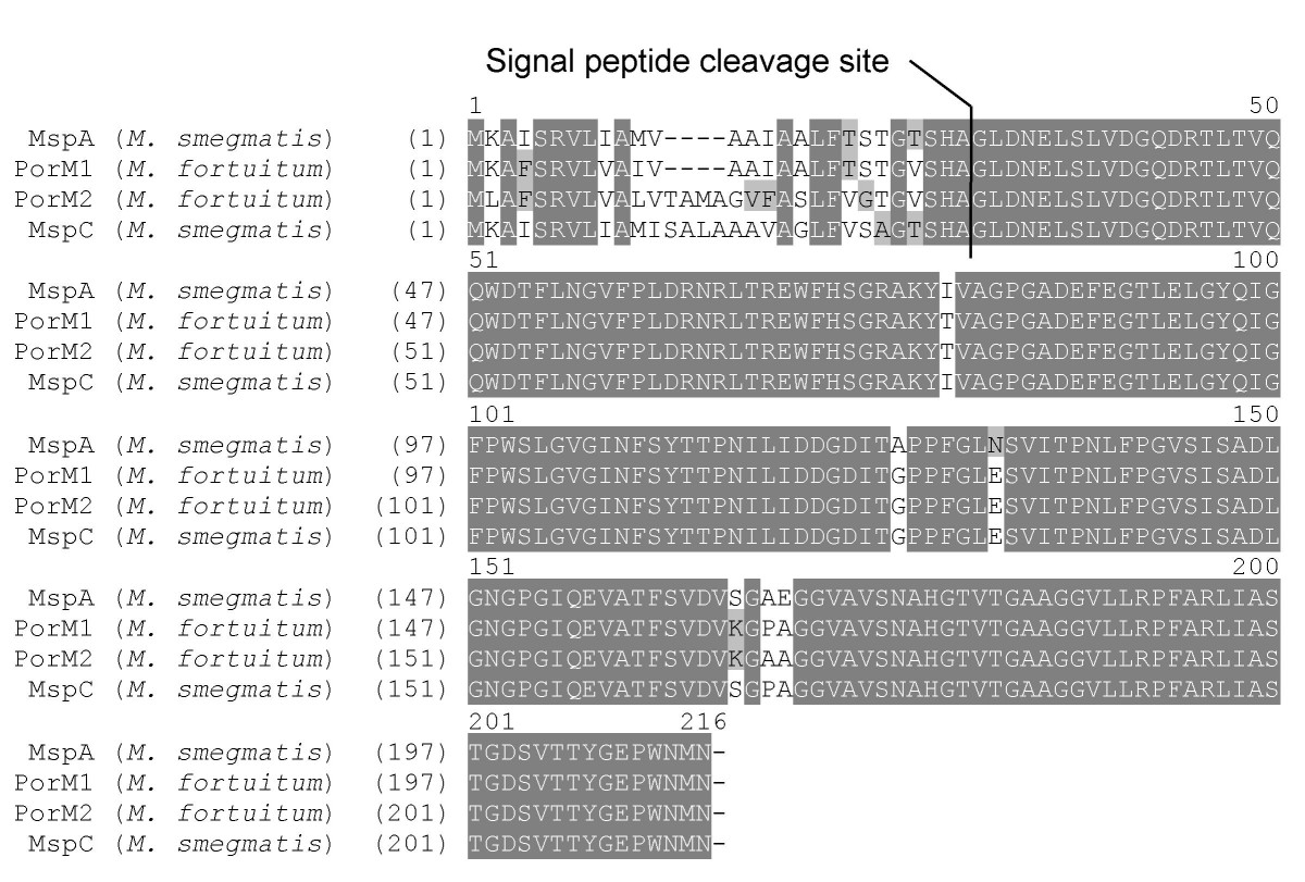 http://static-content.springer.com/image/art%3A10.1186%2F1471-2180-9-31/MediaObjects/12866_2008_Article_702_Fig4_HTML.jpg
