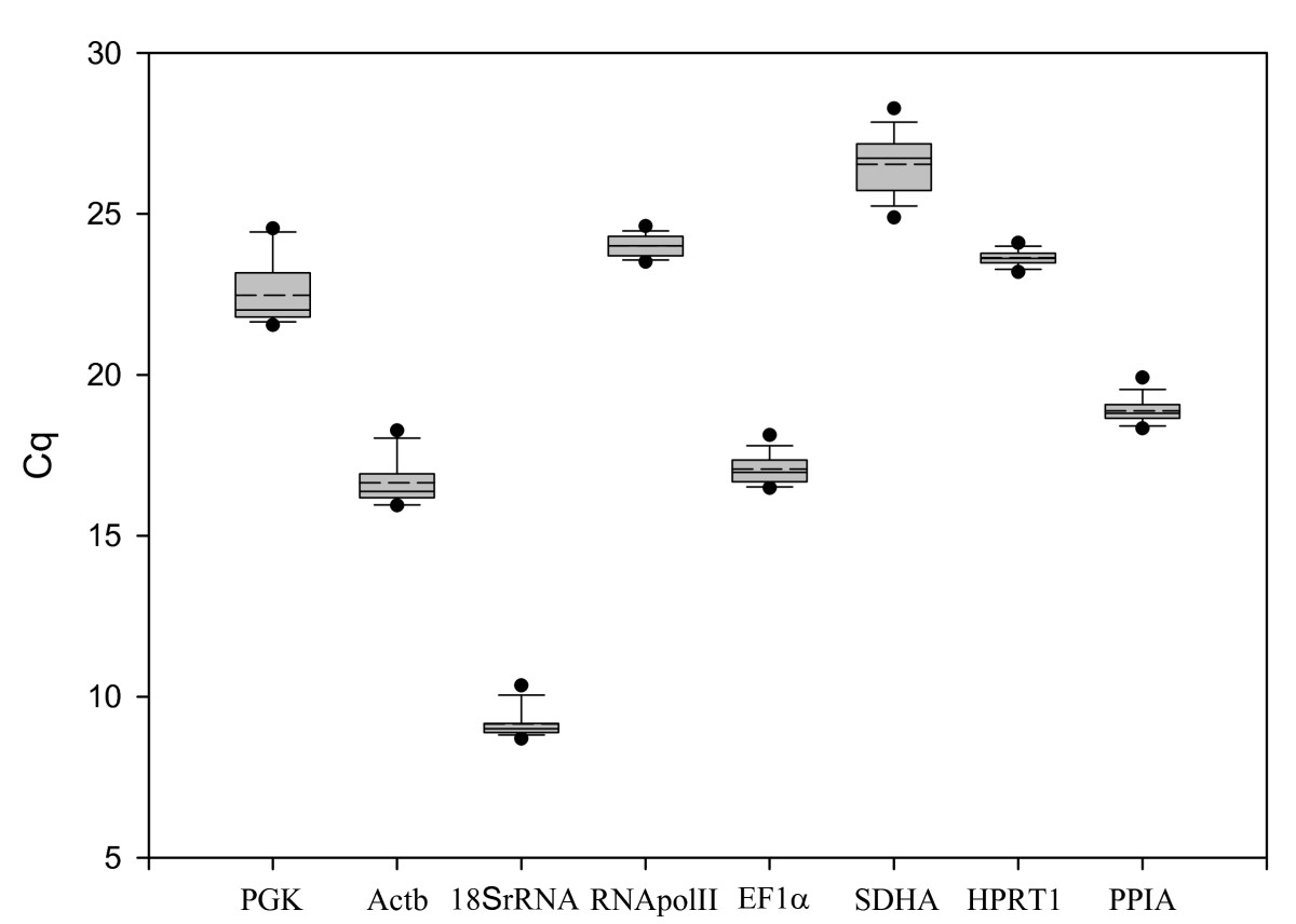 http://static-content.springer.com/image/art%3A10.1186%2F1471-2199-10-80/MediaObjects/12867_2009_Article_448_Fig2_HTML.jpg