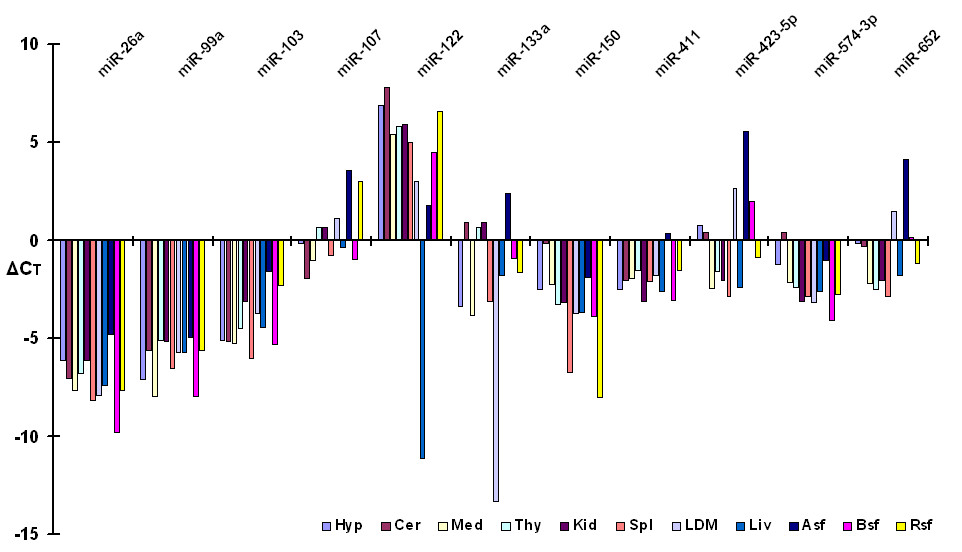 http://static-content.springer.com/image/art%3A10.1186%2F1471-2199-10-90/MediaObjects/12867_2009_Article_458_Fig4_HTML.jpg