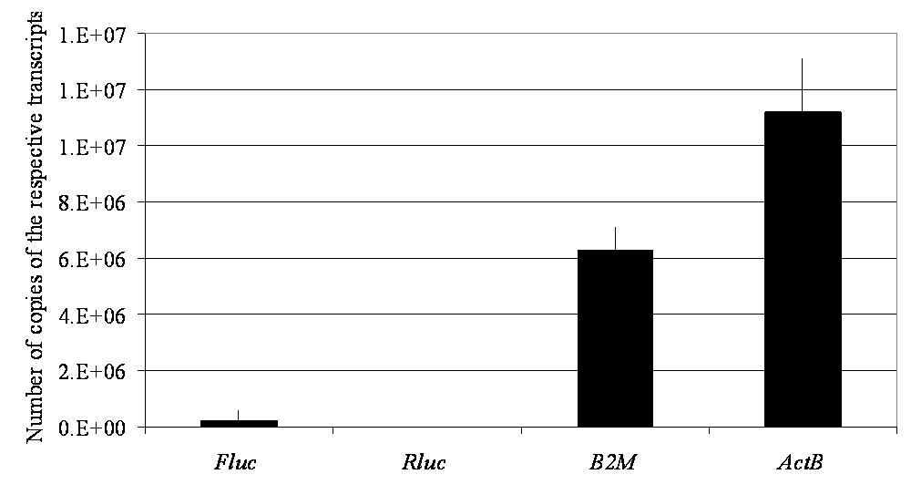 http://static-content.springer.com/image/art%3A10.1186%2F1471-2199-11-103/MediaObjects/12867_2010_Article_700_Fig3_HTML.jpg