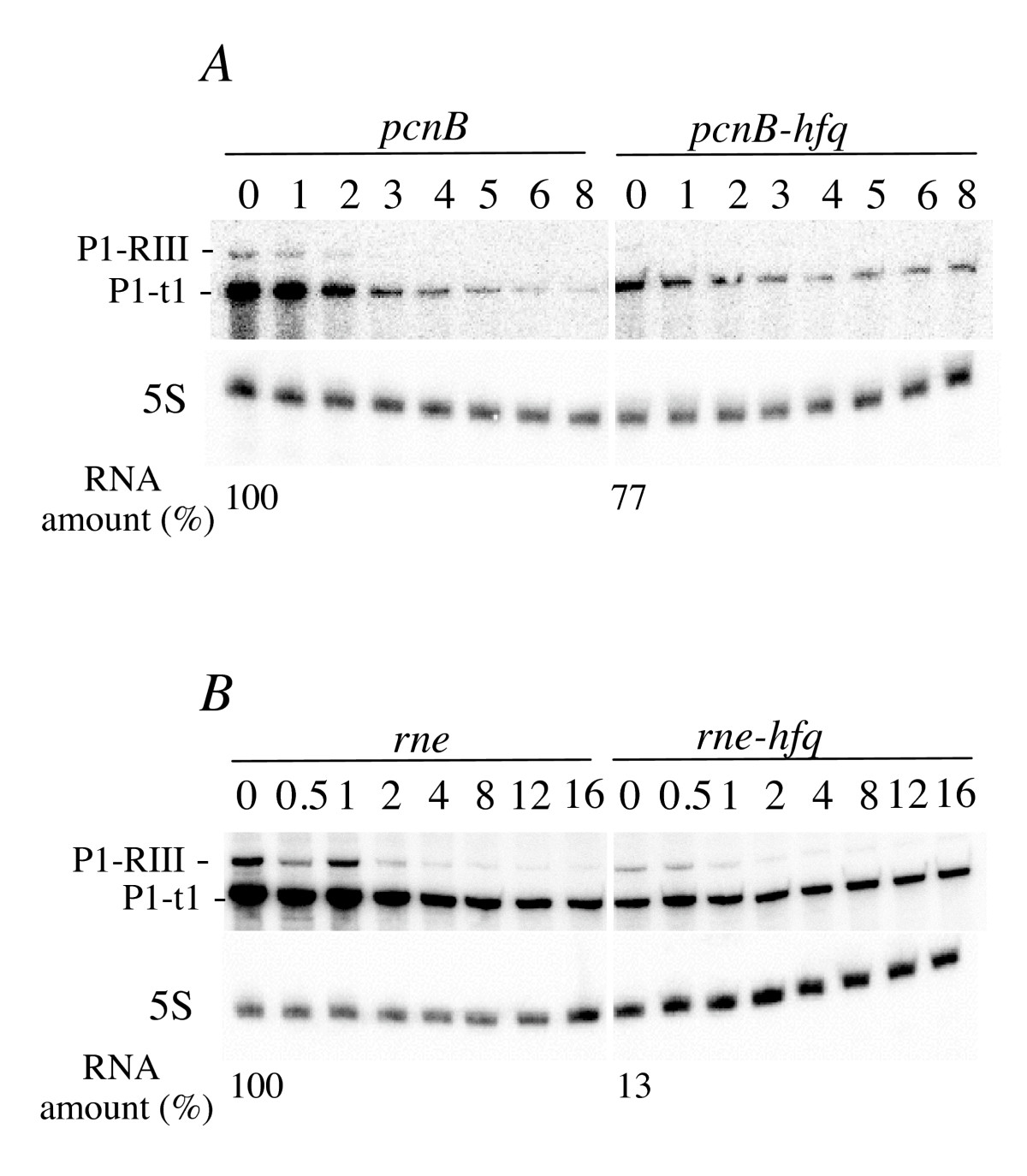 http://static-content.springer.com/image/art%3A10.1186%2F1471-2199-11-17/MediaObjects/12867_2009_Article_498_Fig2_HTML.jpg