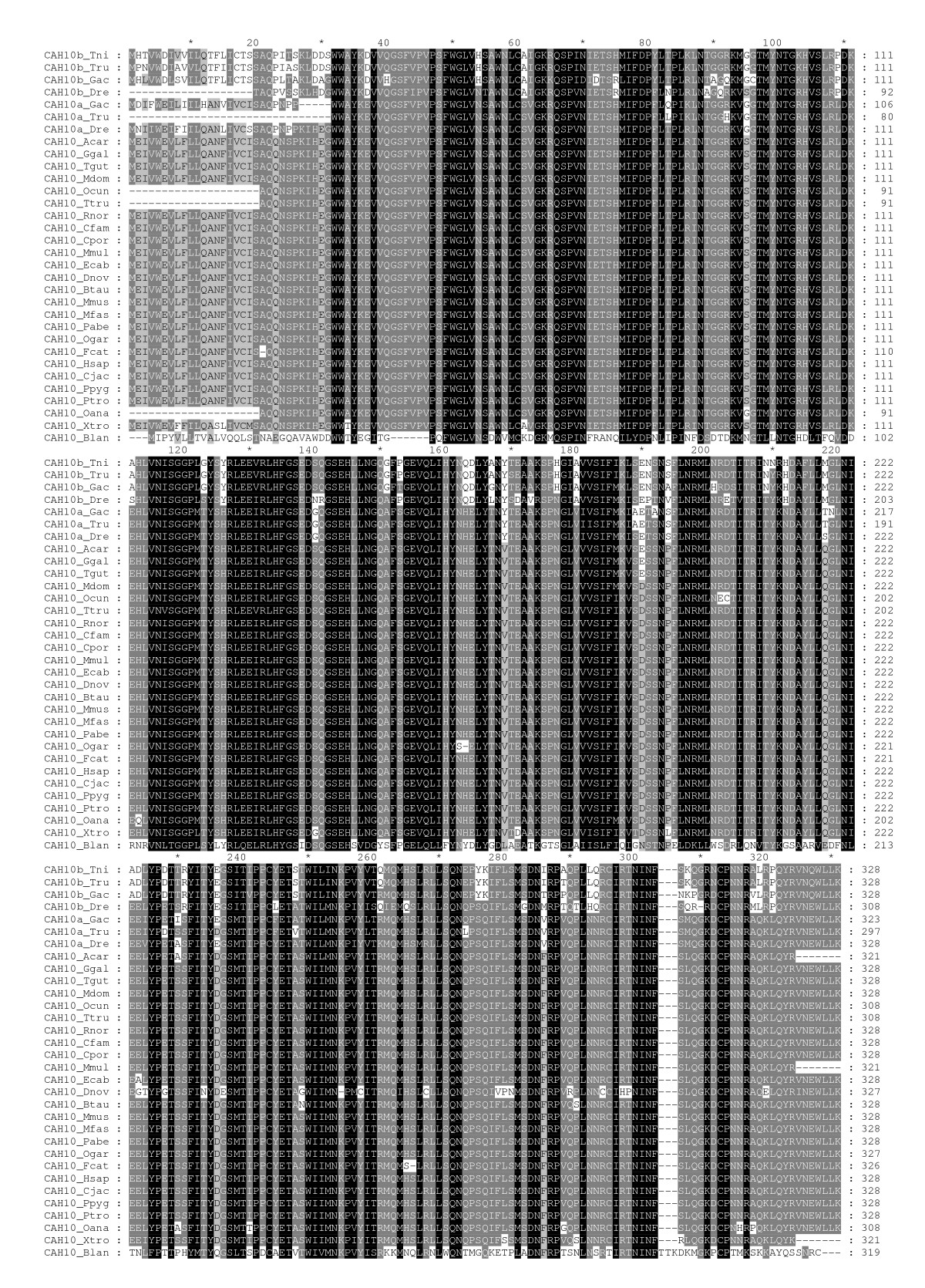 http://static-content.springer.com/image/art%3A10.1186%2F1471-2199-11-25/MediaObjects/12867_2009_Article_506_Fig2_HTML.jpg
