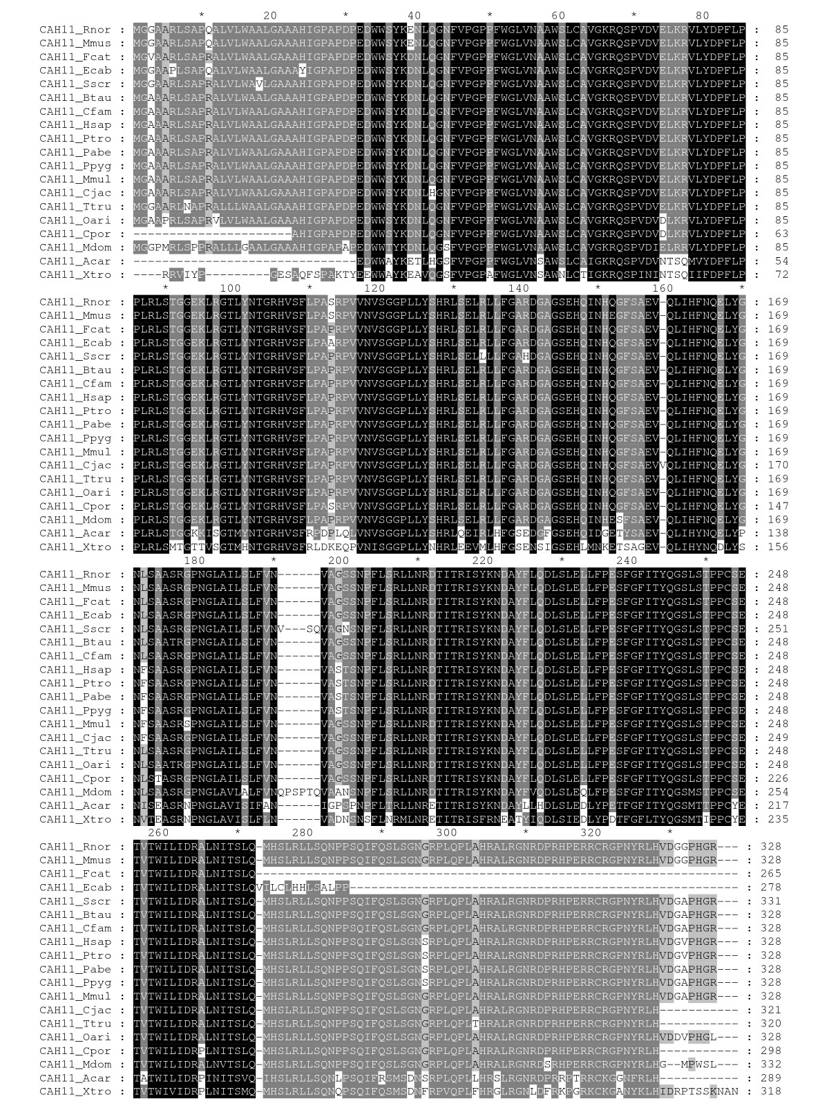 http://static-content.springer.com/image/art%3A10.1186%2F1471-2199-11-25/MediaObjects/12867_2009_Article_506_Fig3_HTML.jpg
